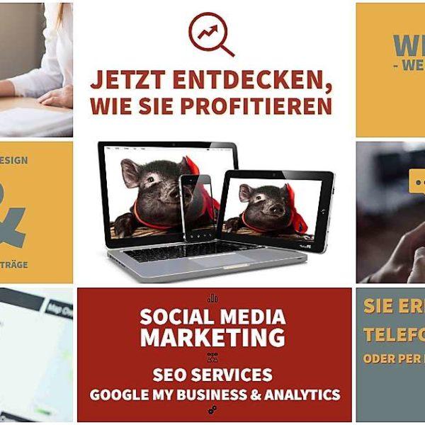 Flyer-die-eberin Webdesign, Printdesign, Top SEO, Social Media