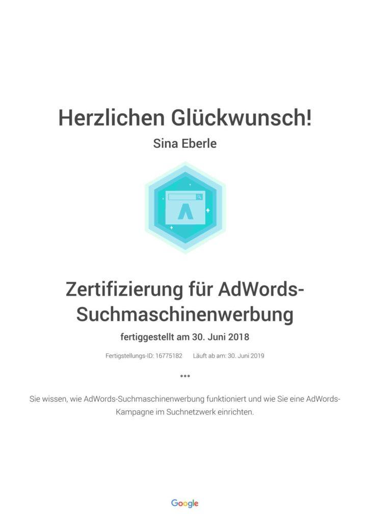 Google-Zertifizierung-für-AdWords-Suchmaschinenwerbung_1